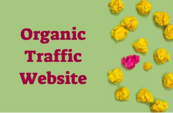 Organic Traffic Website